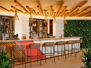 Peyotito bar