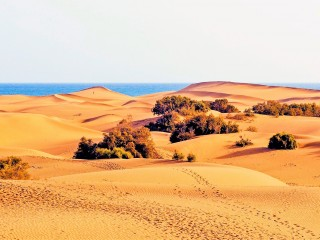 The wonderful golden dunes of Maspalomas