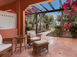 Travelbeam _Premium Garden floor Terrace