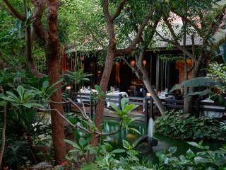 In Black, Asia Gardens